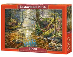 : Puzzle Reminiscence of the Autumn Forest 2000 – gra