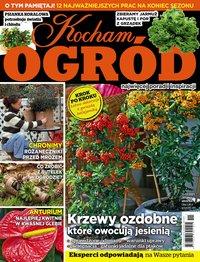 Kocham Ogród – najnowsze e-wydanie