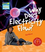 Why Does Electricity Flow? – książka