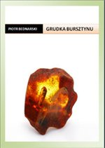 Grudka bursztynu – ebook
