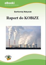 Raport do KOBiZE – ebook