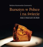 Bursztyn w Polsce i na świecie. Amber in Poland and in the World – ebook