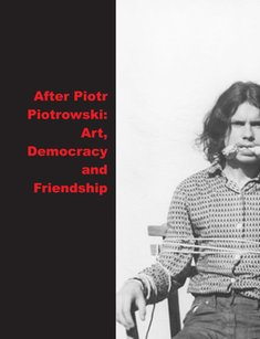 : After Piotr Piotrowski Art. Democracy and Friendship – książka