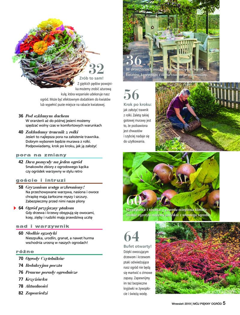 Mój Piękny Ogród E Wydanie 92019 Nextopl